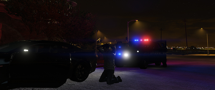 police stop 2
