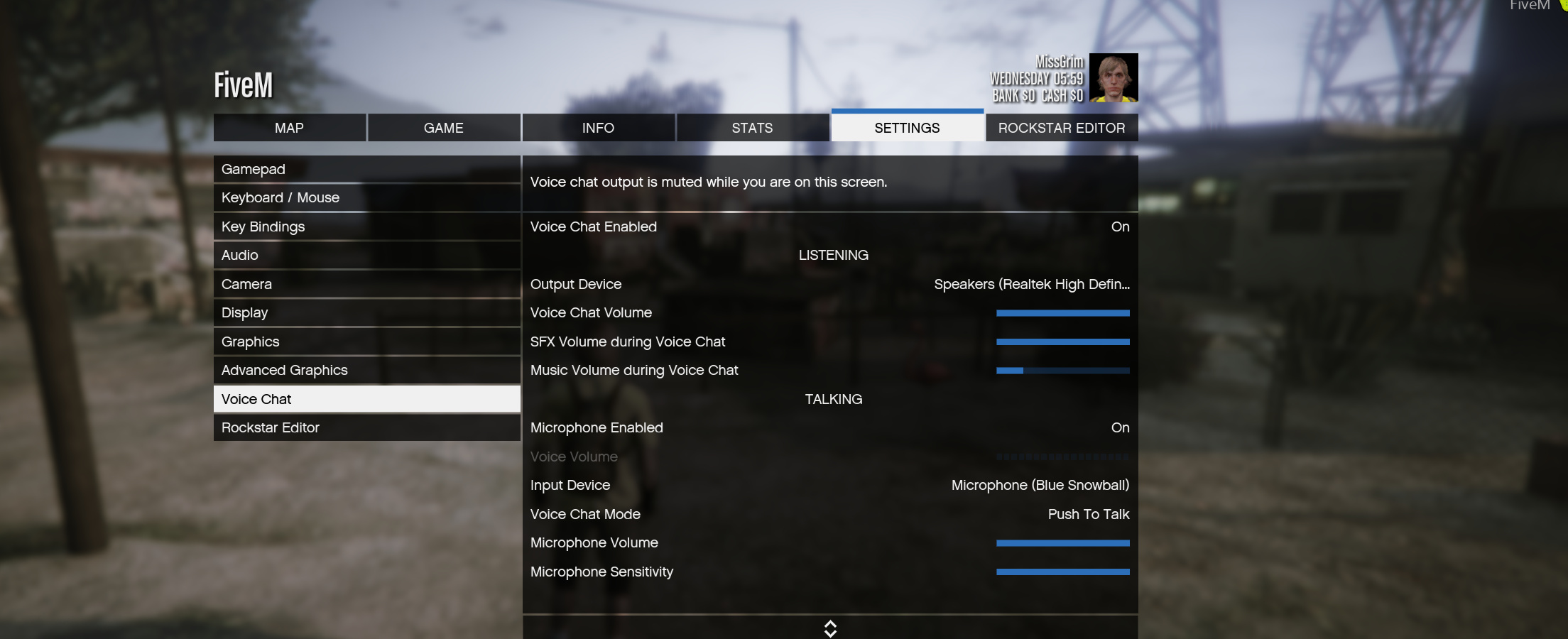 Fivem voice chat not working